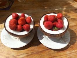 Superfoods- Coconut, Cacao and Maca, crowdink.com, crowd ink, crowdink.com.au