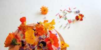 Edible Flowers (Image Source: bakingwithgap), crowdink.com, crowdink.com.au, crowd ink, crowdink