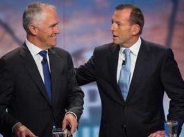 Turnbull vs Abbott, crowdink.com, crowdink.com.au, crowd ink, crowdink