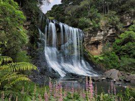 Mokoroa Falls Waitakere Ranges