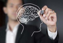 Brain Training, crowdink.com, crowdink.com.au, crowd ink, crowdink